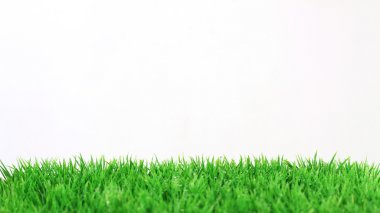 Stripe of fresh green grass on white background