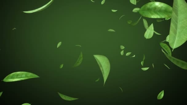 Flying leaves in looped animation. HD 1080. Alpha mask.