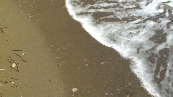 Waves on the sandy beach. HD 1080.