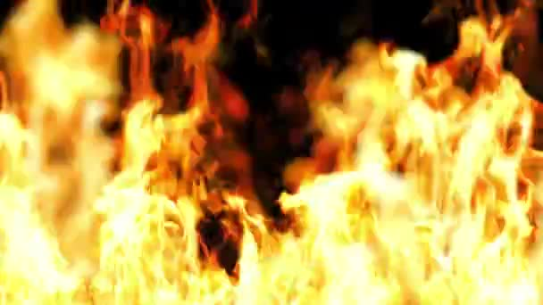 plamen ohně