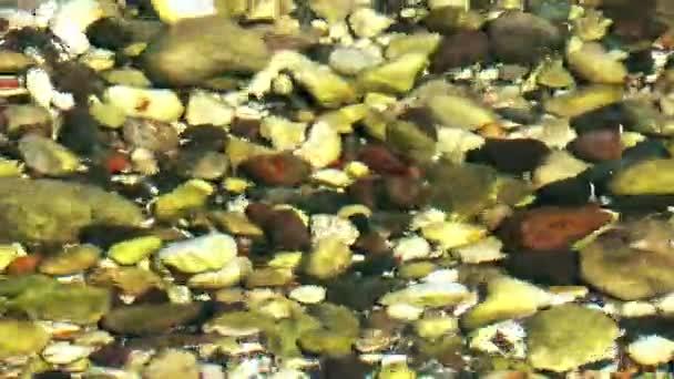 海の水の下で石