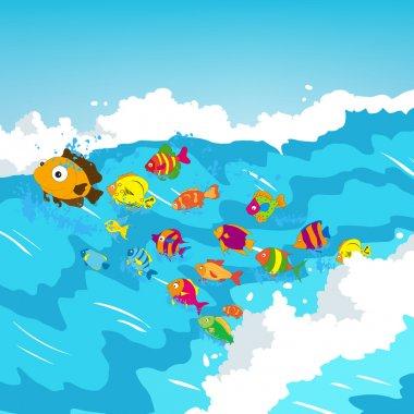 Surf fish