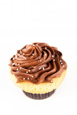 Festive Cupcake with Chocolate Frosting Top