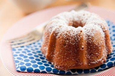 Miniature Bundt Cake Powdered with Sugar