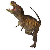 Fényképek A Tyrannosaurus Rex profil