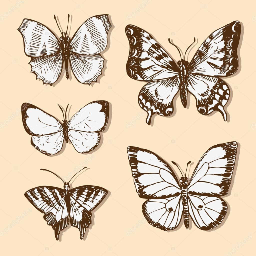 Set of vintage butterflies