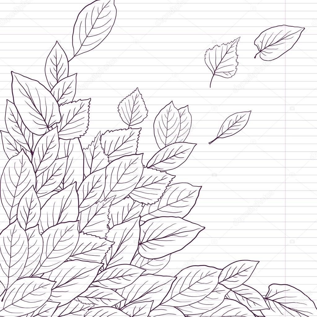 Ink drawing  leaves at lined paper
