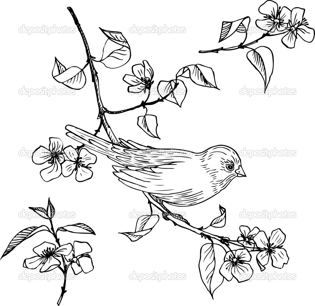 Linear Drawing Of Bird At Branch Stock Vector C Cat Arch Angel