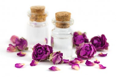 Two fragrance bottles filled with rose aroma oil with purple dried rose buds and petals isolated on white background.