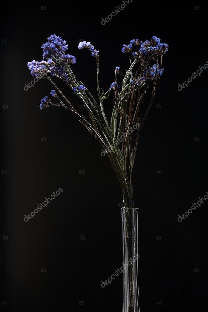 Bouquet Of Flowers In Thin Glass Vase Stock Photo Photollurg2