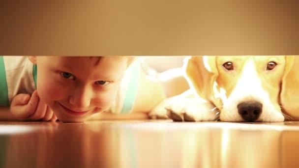 smích malého chlapce s jeho nejlepším přítelem beagle pes pod postelí