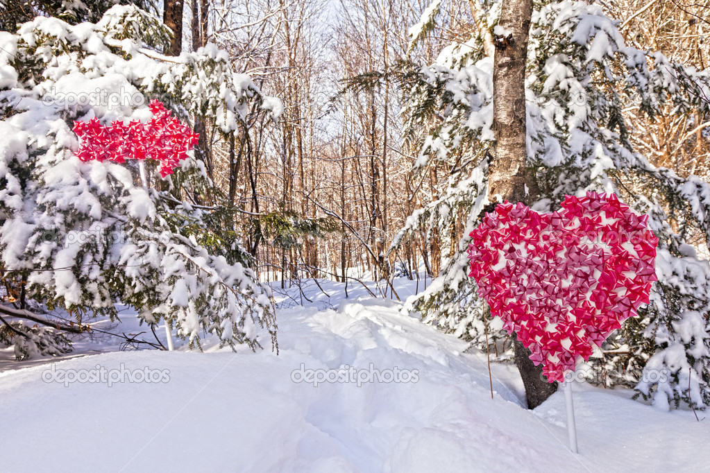 Snowy Valentine's Day