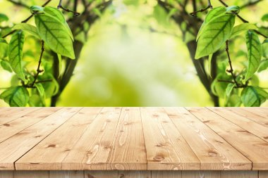 Empty wooden table in a sun drenched summer garden for product placement