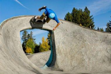 Skateboarder Riding High