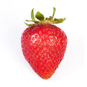 Fotografie červená jahoda