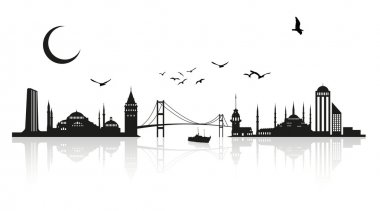 Istanbul Silhouette stock vector