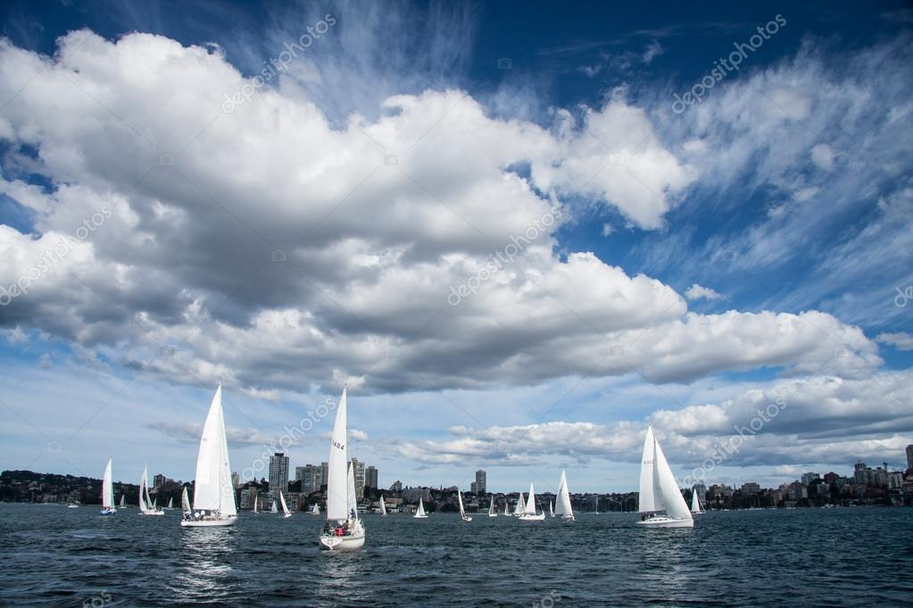 Sailing ship yachts in Sydney habour