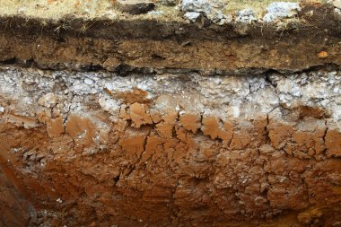 Image of underground soil layers