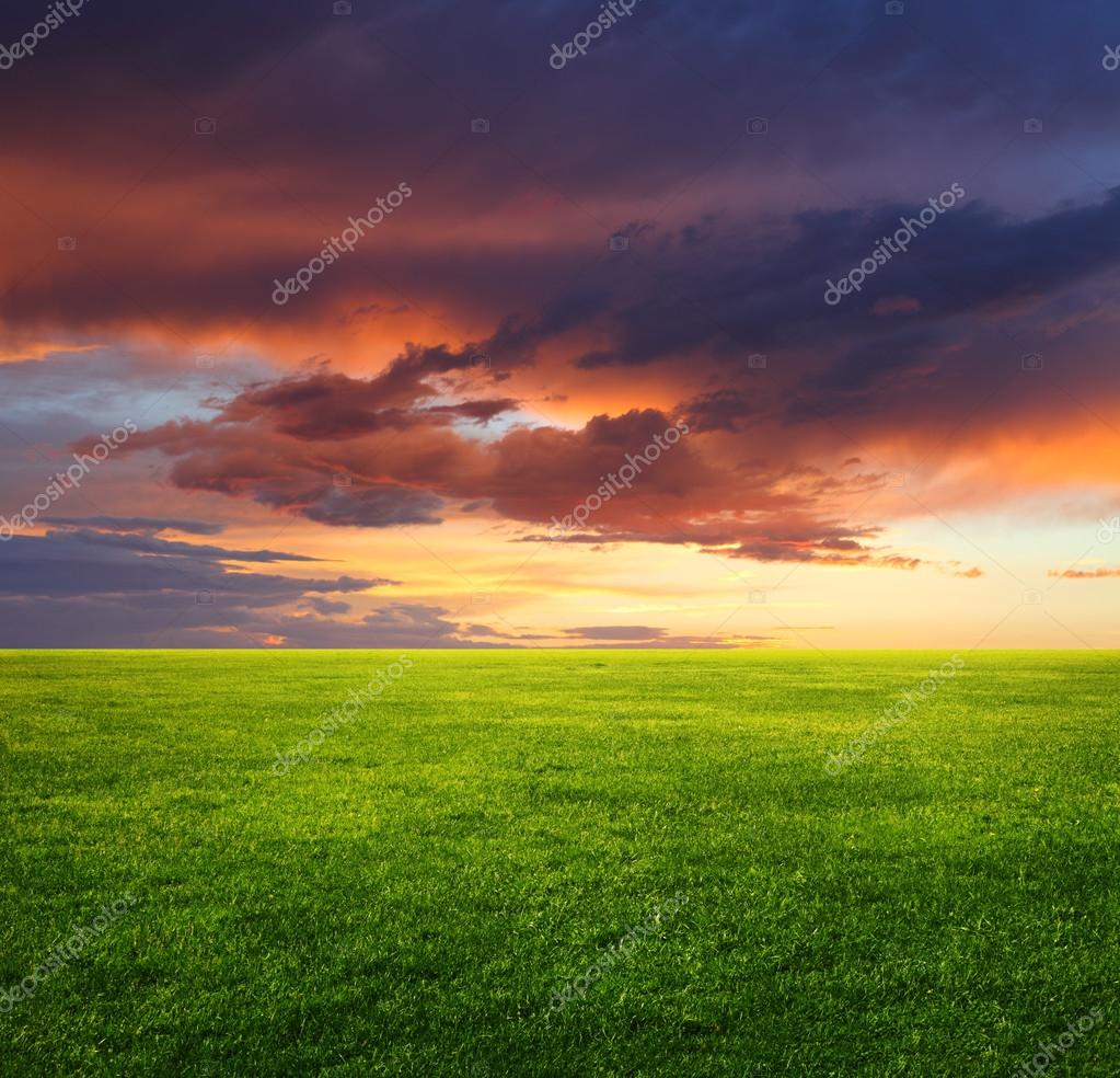 Image of green grass field and beautiful evening sky