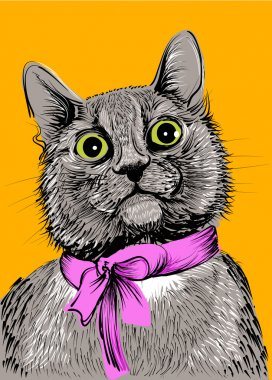 Cat with pink bow. Hand drawing vector illustration