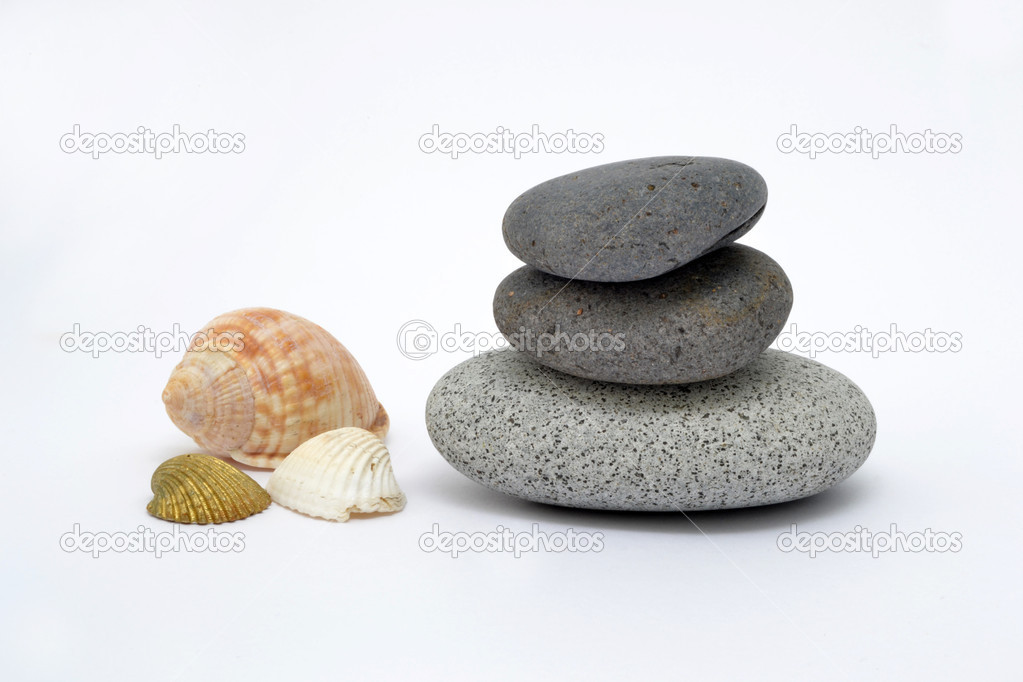 Zen stones with conch