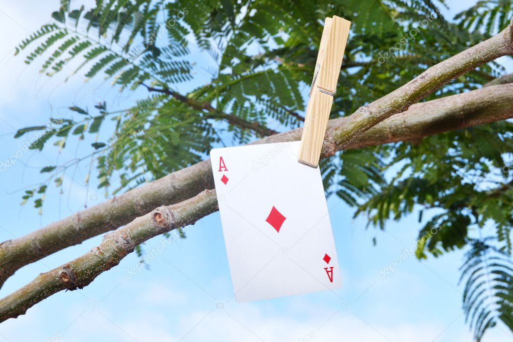 Poker card hanging from the tree