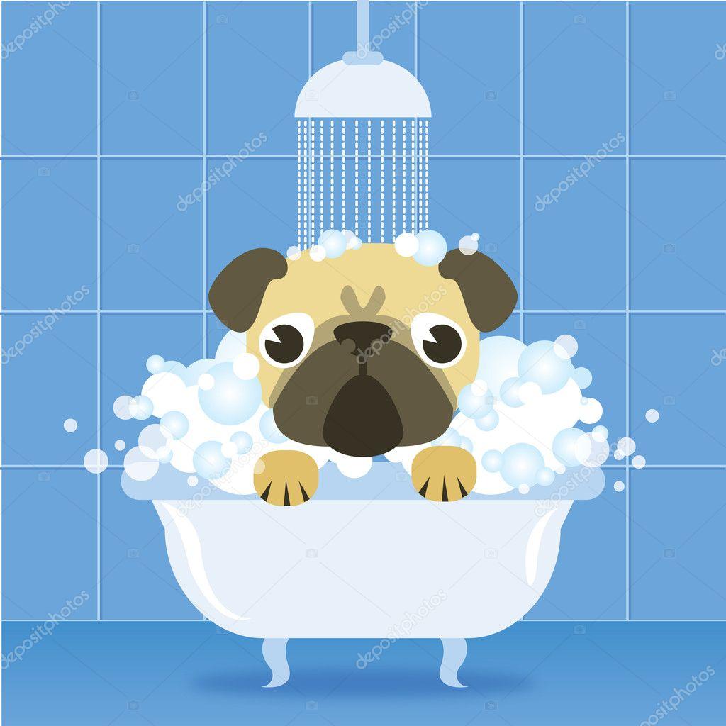 Lustige Mops Im Badezimmer Stockvektor C Olyzel 33703407