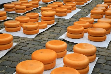 Dutch Gouda cheese market 04
