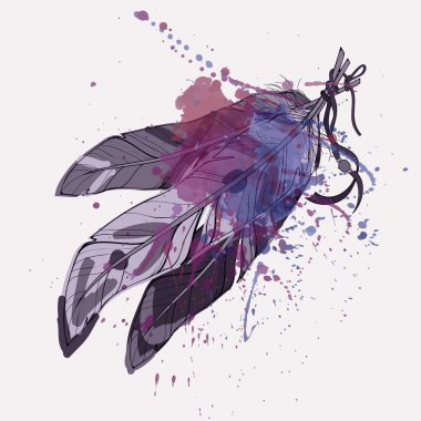 Vector illustration of decorative feathers with watercolor splash