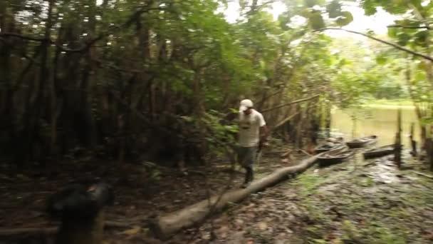 6dc3e22da4fac0 viaggio nella foresta pluviale del sud america — Video Stock © w ...