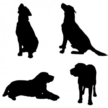 Vector silhouette of a dog.