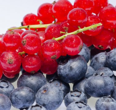 Currants and blueberries