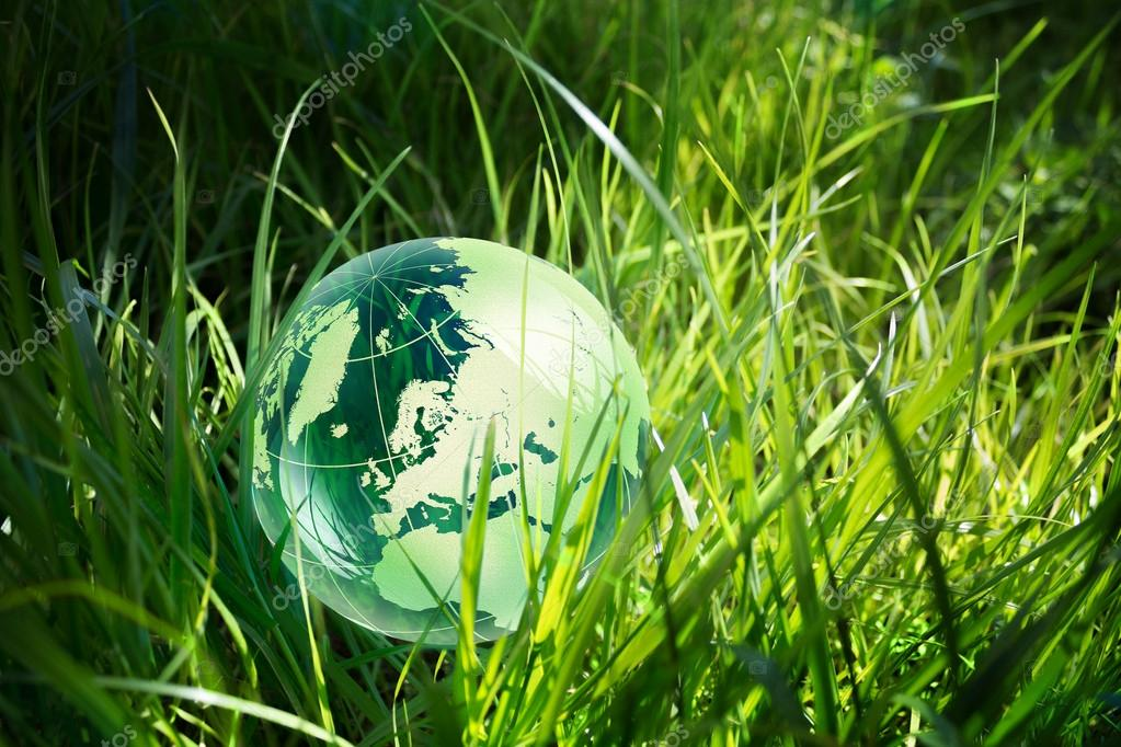 Green globe in grass