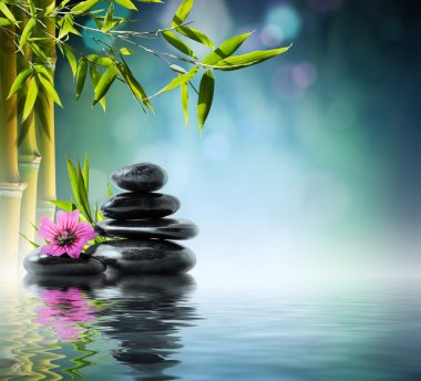 Tower black stone and hibiscus with bamboo on the water