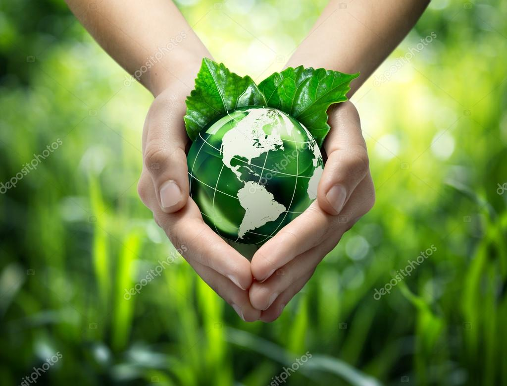 Environmental concept with glass globe and leaves on grass background - America