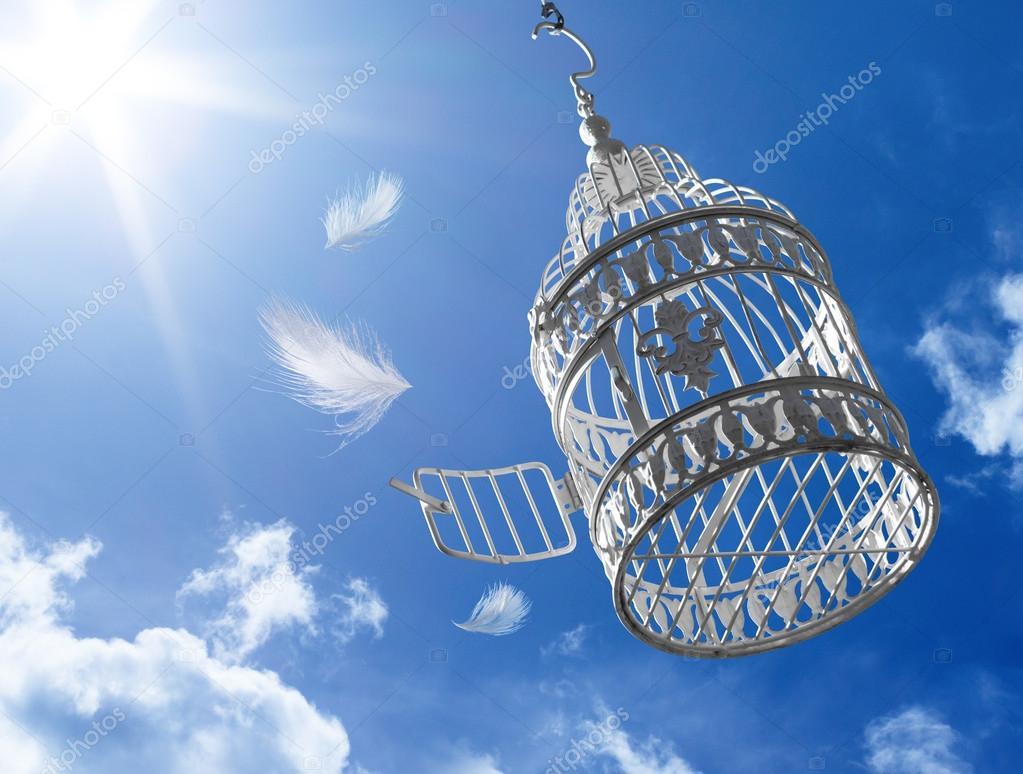 Escape to freedom - concept