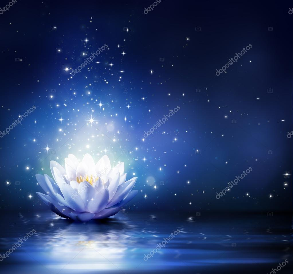 Magic flower on water - blue