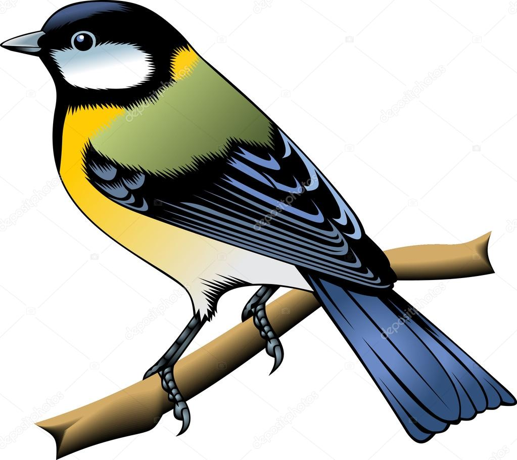 oiseaux image vectorielle hekunhuang 31281457. Black Bedroom Furniture Sets. Home Design Ideas