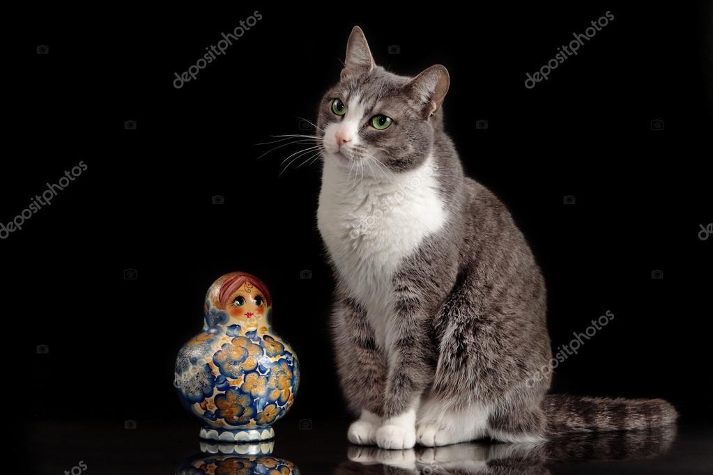 grey cat sitting on black background with matreshka