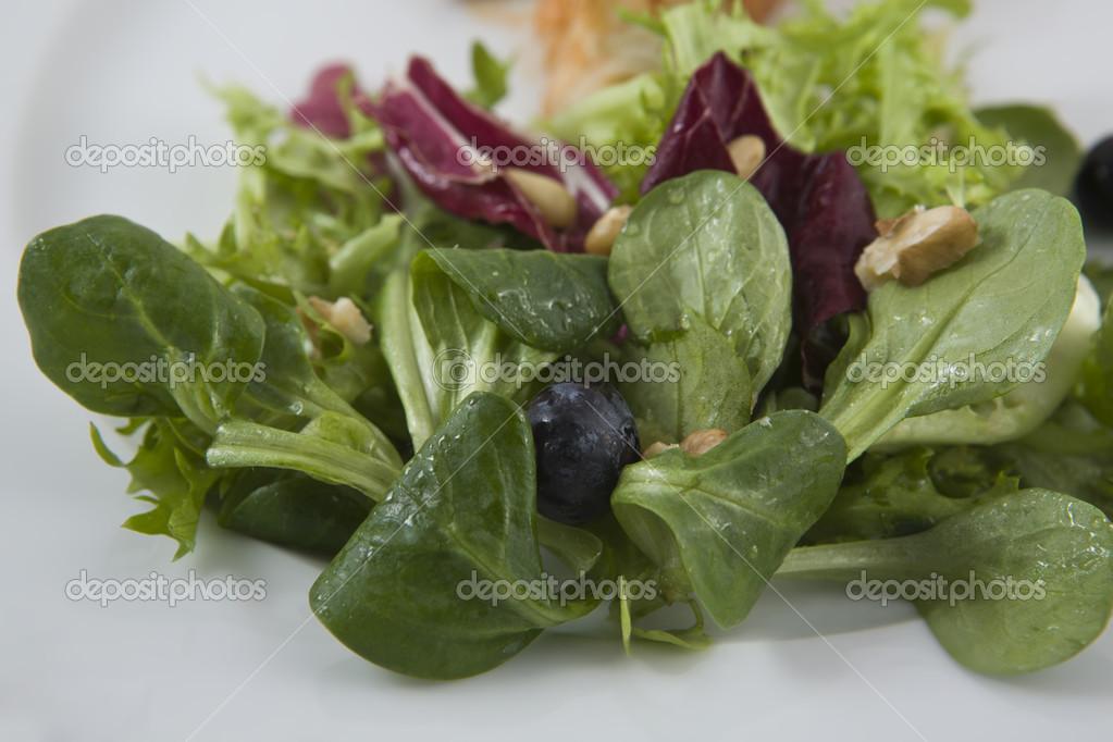 Dettaglio di insalata fatta di diversi tipi di lattuga - Diversi tipi di erba ...