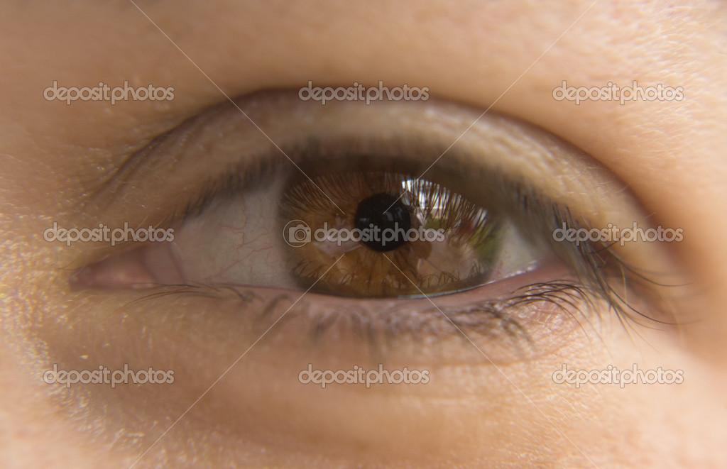 imágenes ojos miel ojos de miel sheila foto de stock