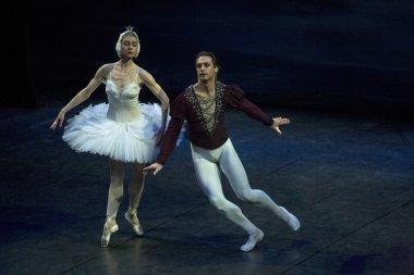 Sigfrido and Odette