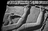 Fényképek Isten thoth