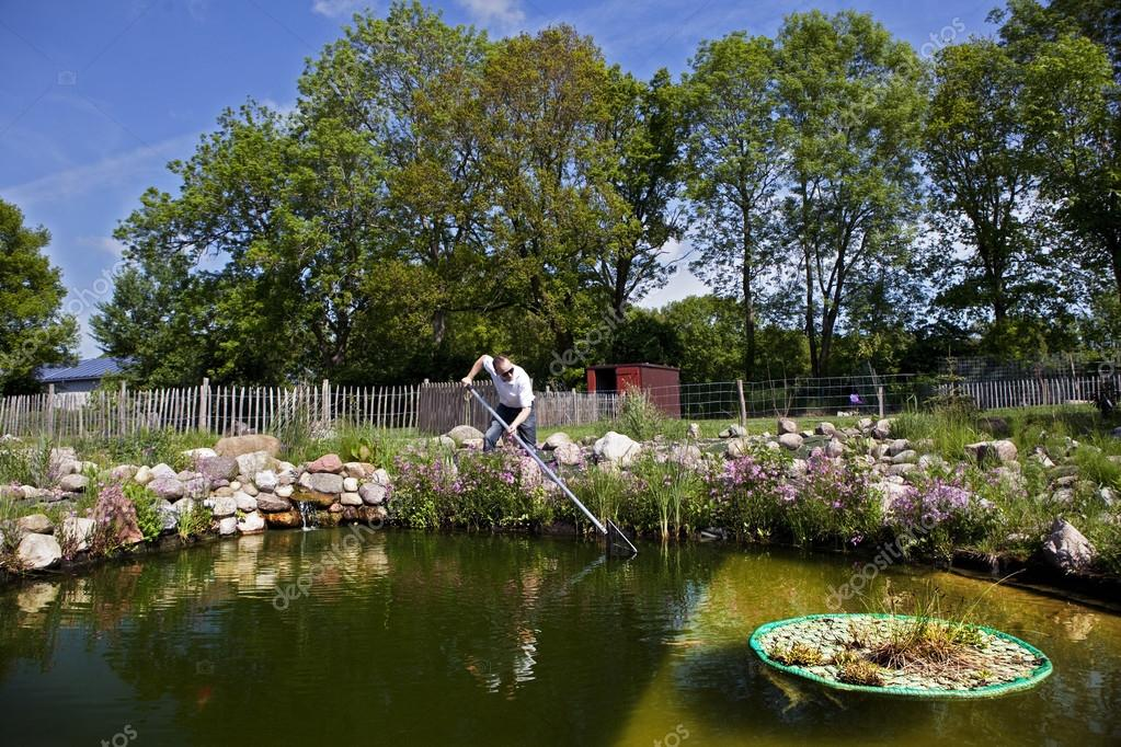 Garden pond artificial stock photo purple queue 35689431 for Artificial pond water