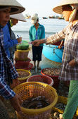 Rybí trh na pláži