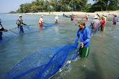 Teamarbeit der Fischer am Strand