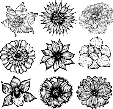 Set of 9 different hand drawn flowers, black and white isolated vector illustration