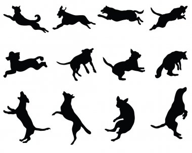 Black silhouettes of jumping dogs, vector clip art vector