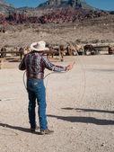 Fotografie Cowboy lassoing