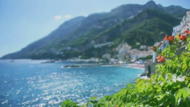 ibišek rose na pobřeží amalfi v Itálii